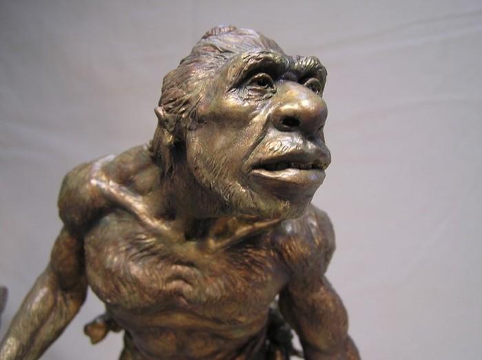 Дарвин был не прав со своей теорией эволюции?