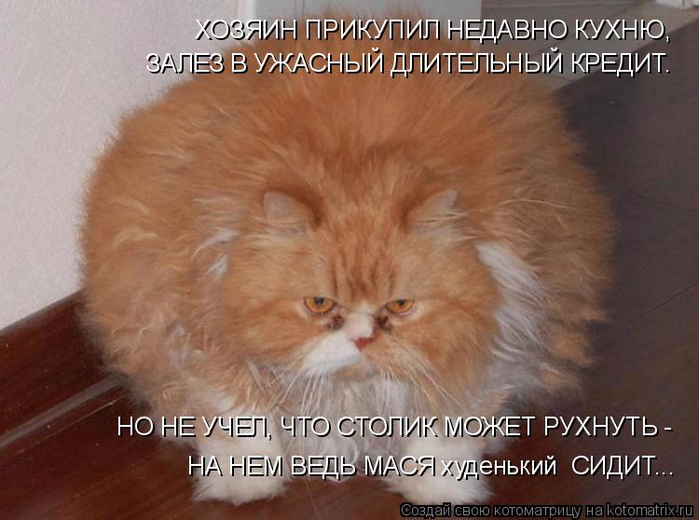 kotomatritsa_m (700x520, 323Kb)