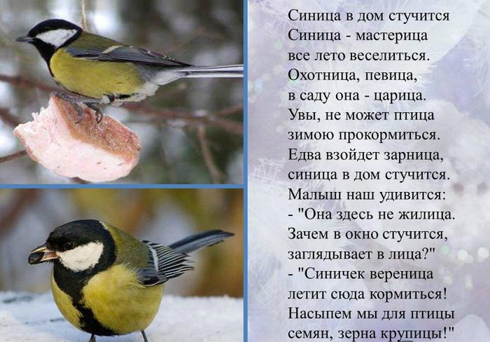 """alt=""""Птичьи приметы""""/2835299_6_1_ (700x488, 355Kb)"""