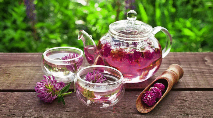 content_the_most_fragrant_herbal_teas__econet_ru (700x388, 452Kb)