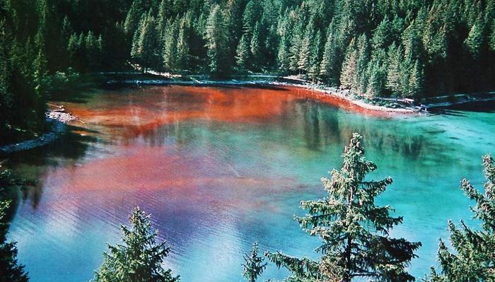 lago-tovel-trentino-lago-rosso (900x599, 71Kb)
