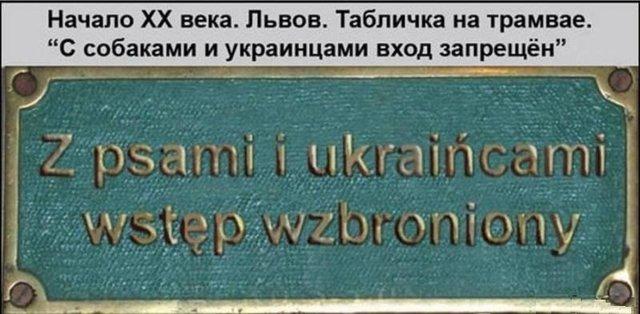 lviv (640x314, 51Kb)