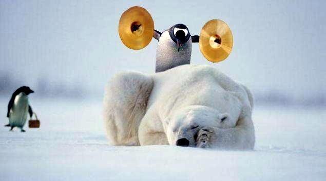 Смешной пингвиненок!