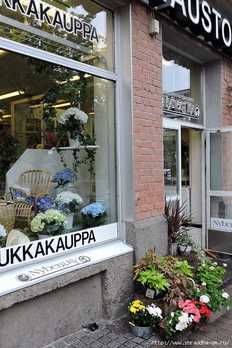 Финляндия, июль 2017 (2) (466x700, 363Kb)