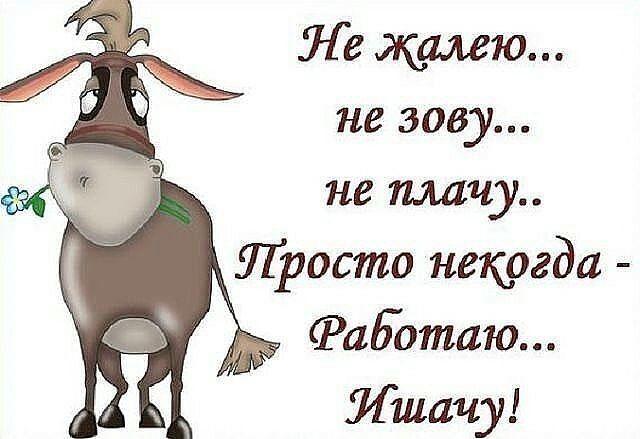 http://img0.liveinternet.ru/images/attach/d/0/136/335/136335294_image.jpg