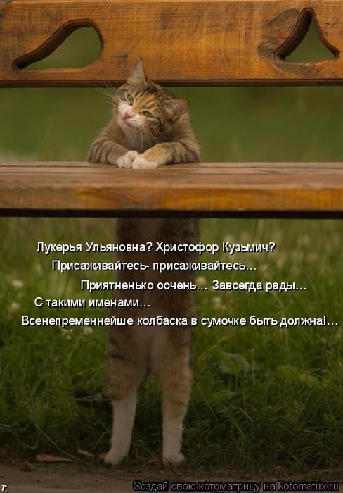 kotomatritsa_p (488x700, 320Kb)