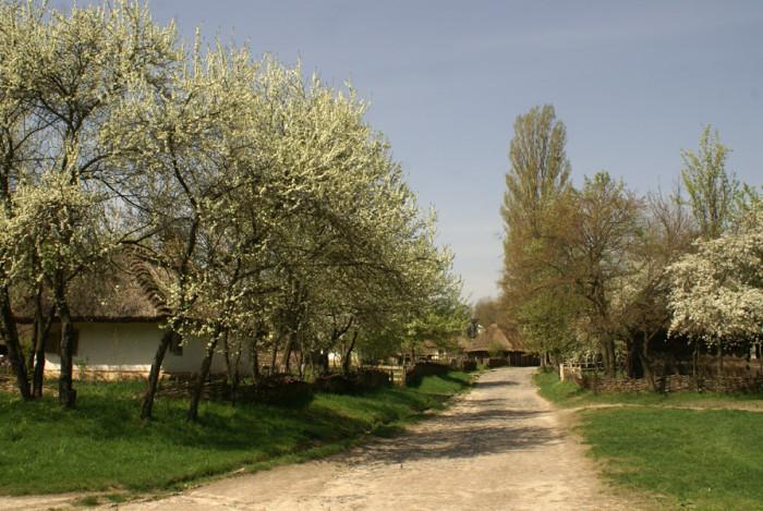 Середня Наддніпрянщина (історико етнографічний район)