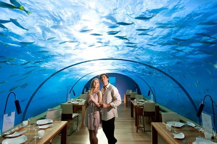 Какие есть самые необычные рестораны в мире?