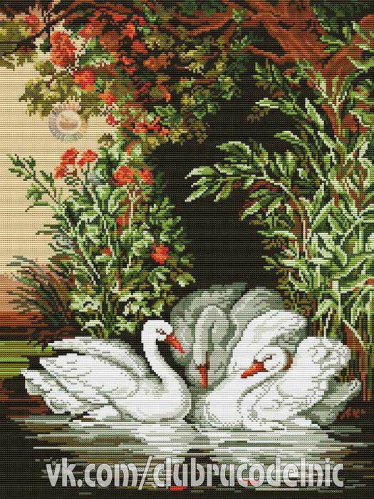 Лебеди (525x700, 670Kb)