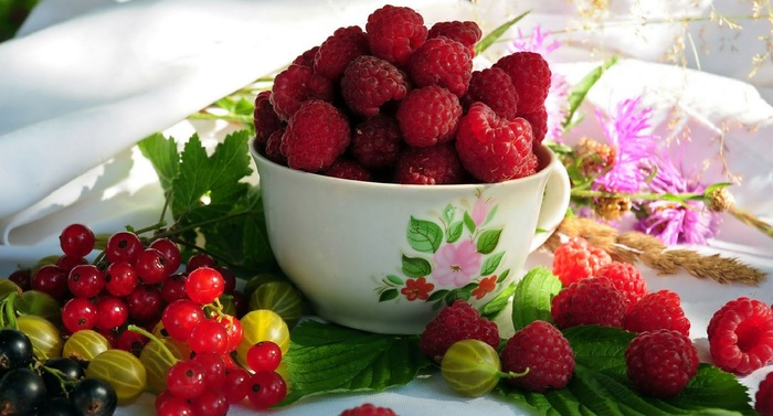 tenebra.fruits (9) (700x377, 97Kb)
