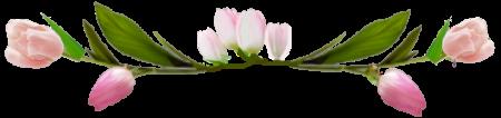 тюльпаны (450x106, 55Kb)
