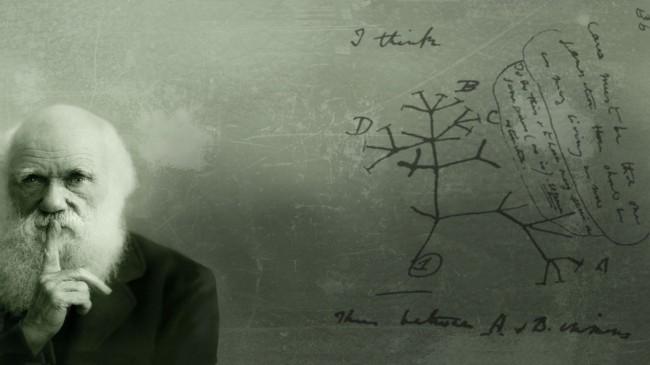 Что не может объяснить теория эволюции Дарвина?