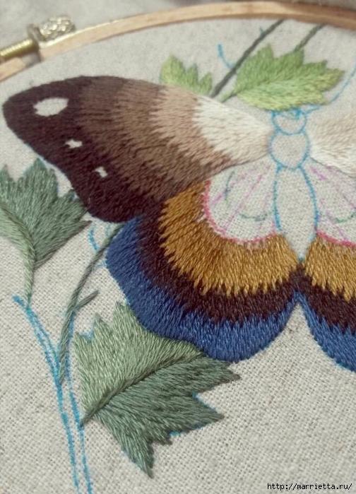 Вышивка гладью Бабочка (6) (504x700, 277Kb)