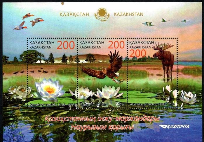 MiKZ BL64 Фауна и флора (700x489, 181Kb)