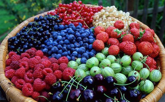 ягоды (574x354, 54Kb)