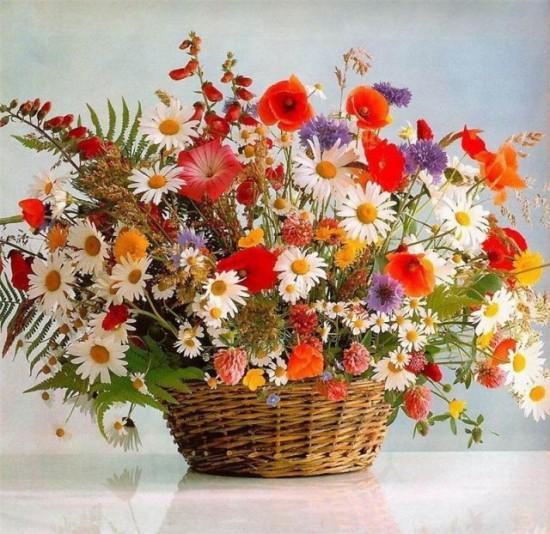 полевые-цветы-e1297678872831 (550x534, 108Kb)