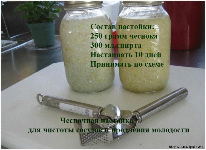 "alt=""Чесночная настойка для чистоты сосудов и продления молодости""/2835299_Chesnochnaya_nastoika_dlya_chistoti_sosydov_i_prodleniya_molodosti (700x509, 274Kb)"