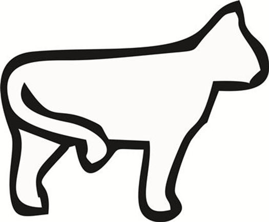 Повадки котов в картинках: язык домашних животных