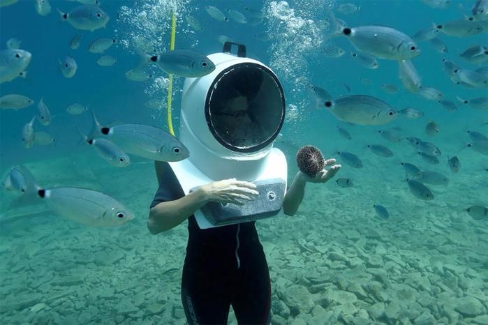 подводный парк в пуле хорватия 4 (700x466, 336Kb)