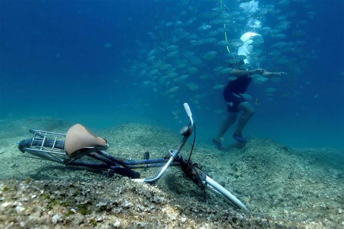 подводный парк в пуле хорватия 6 (700x466, 329Kb)