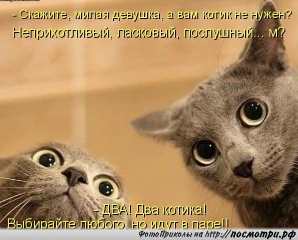 3085196_L0JzszTyy4k (595x478, 59Kb)