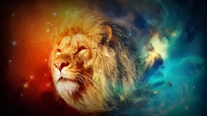 cats-lion-space-animal-photography (700x393, 346Kb)
