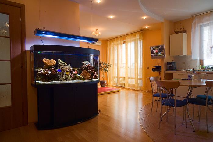 1246871_morskoi-akvarium-v-interere (700x466, 151Kb)