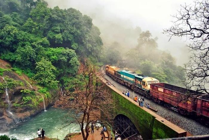 Часто думают, что Индия— это страна джунглей...