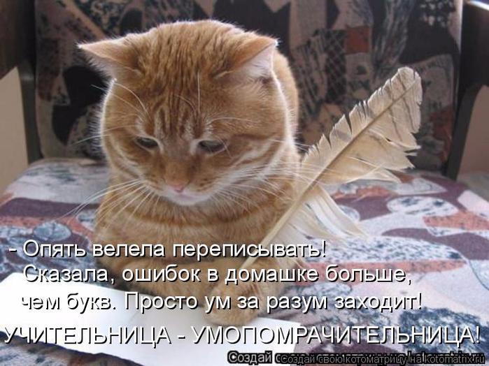 kotomatritsa_D (700x524, 379Kb)