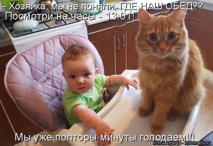 kotomatritsa_V (700x480, 342Kb)