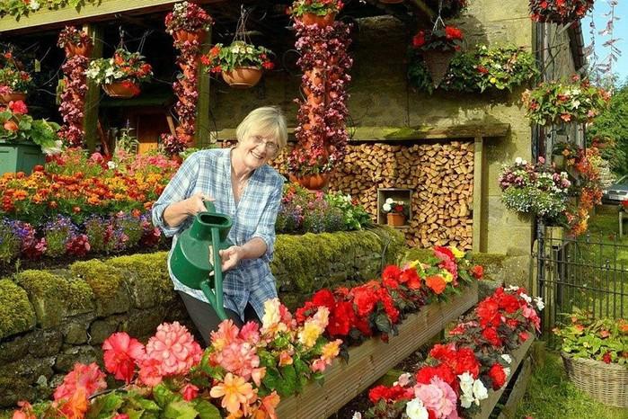 Цветочный дом в Англии устроили