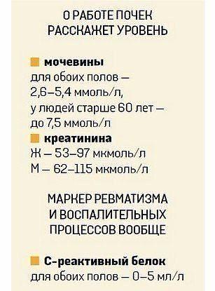 таблица5 (307x415, 94Kb)