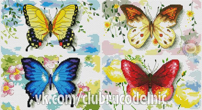 Бабочки (700x382, 489Kb)
