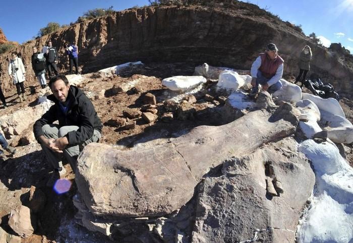 Самый большой динозавр в истории   в Патагонии найдены его останки