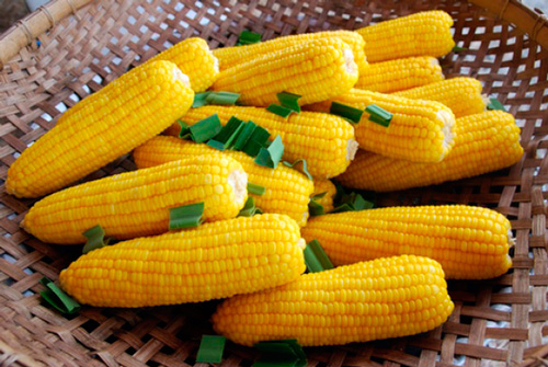 Varenaya-kukuruza (500x335, 230Kb)