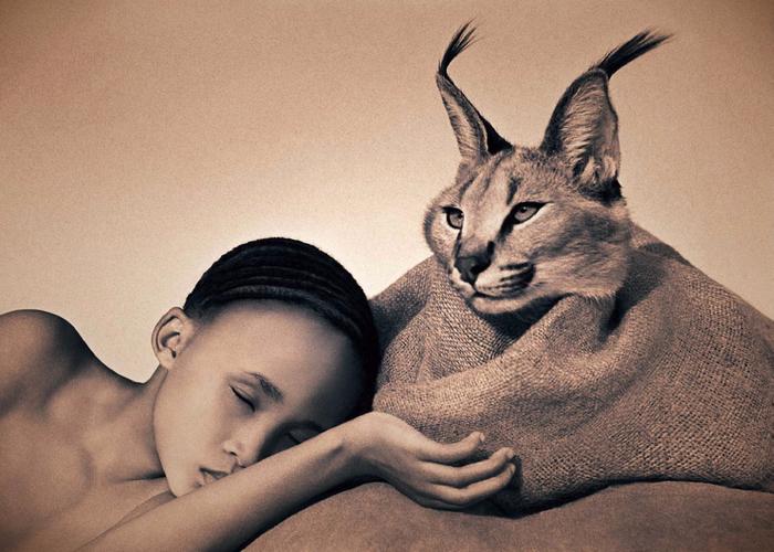 Великолепные работы фотографа Грегори Колберт