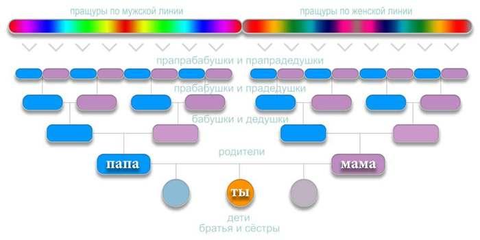 at-DNA (700x313, 18Kb)