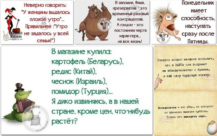 5672049_1439149515_frazki (700x437, 89Kb)