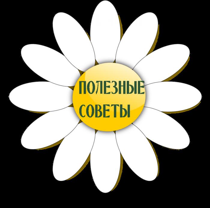 4565946_polez_sov (700x693, 183Kb)
