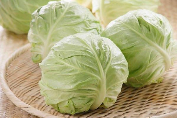 салаты из капусты 1 (600x400, 169Kb)