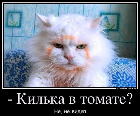 0_bba55_eba5413e_orig[6] (530x441, 198Kb)