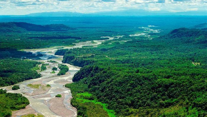 Какая самая длинная река в мире?