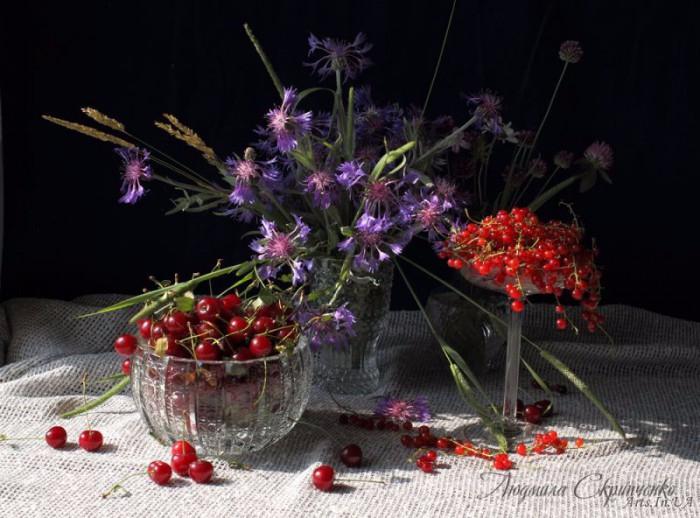 foto_Lyudmila_Skripchhenko_01-e1443635130552 (700x518, 299Kb)