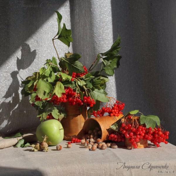 foto_Lyudmila_Skripchhenko_07-e1443635376432 (600x600, 317Kb)