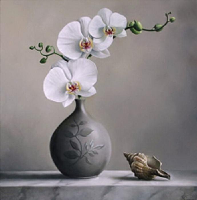 3-Белая-Орхидея (690x700, 227Kb)