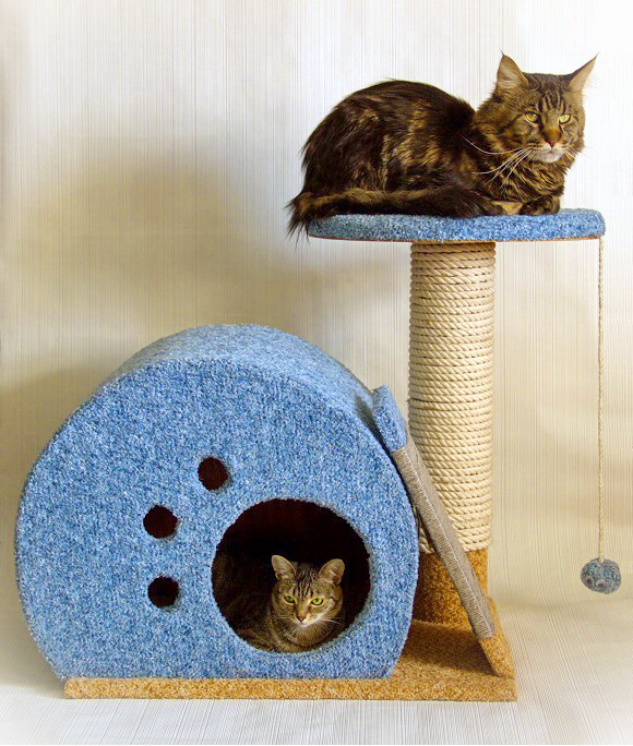 Как своими руками сделать домик для котят