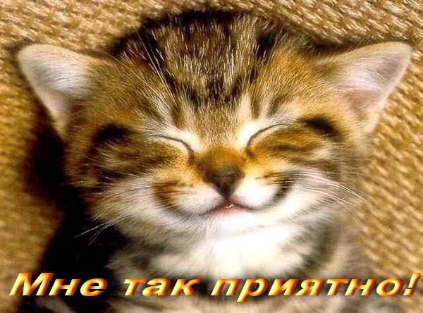4497432_mne_priyatno (600x444, 53Kb)
