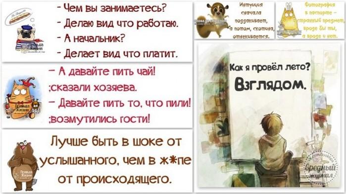 5672049_1377225906_frazochki (700x393, 81Kb)