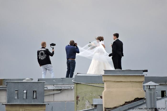 Свадьба на крыше Санкт-Петербург (1) (700x466, 158Kb)