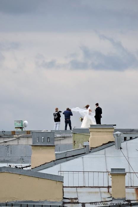 Свадьба на крыше Санкт-Петербург (3) (466x700, 185Kb)